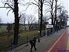 2009_02_28_07_24_52_tomaszow_boleslawiecki.jpg